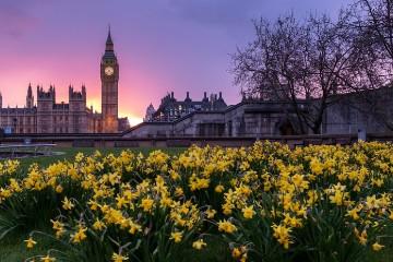 UK & Ireland Universities